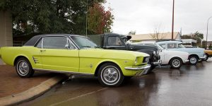 Admire the vintage cars on display